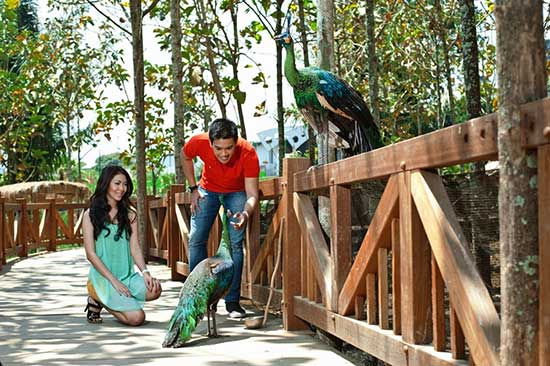 eco green park di malang
